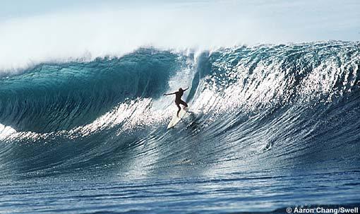 photo de surf 764
