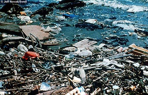 Stormwater Runoff Pollution : Runoff explained surfline