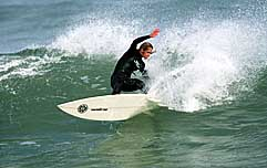 Largest Encyclopedia of Surfing
